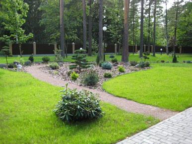 Ландшафтный дизайн лесной стиль